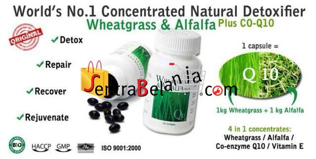 Wheatgrass Alfalfa Plus CoQ10
